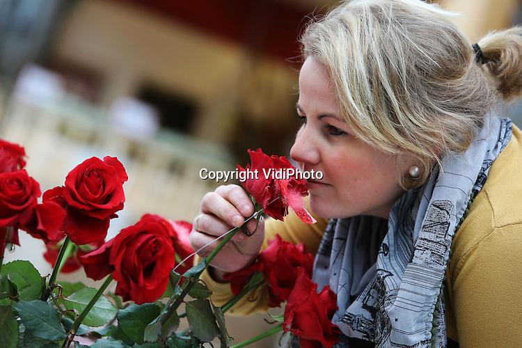 Foto: VidiPhoto<br /> <br /> EDE - Bloemenmeisje Bertine van de Meent, van bloemisterij Meent &amp; Bouman, zoekt maandag de mooiste rozen in het groothandelscentrum van bloemenveiling Plantion in Ede. Meent &amp; Bouman verzorgt de aankleding van veel winkels, die zich nu volop richten op Valentijnsdag vrijdag. Op bloemenveiling Plantion zijn de rozen nu al niet aan te slepen, mede verzoorzaakt door de staking van het personeel op bloemenveiling FloraHolland in Aalsmeer. Plantion, waar gewoon wordt doorgewerkt, profiteert nu van de extra vraag en aanbod.