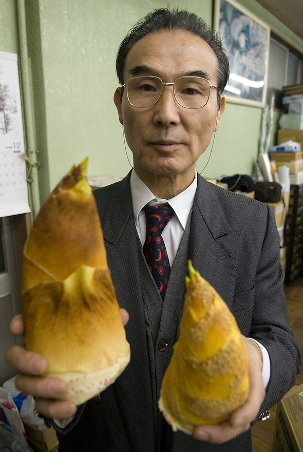 Maiduru president, Etsuji Isozaki, holds plastic bamboo shoots at Maiduru Corporation, Tokyo, Japan, 22nd December 2008. Maiduru corporation makes highly realistic plastic food for display in restaurant and cafe windows. .