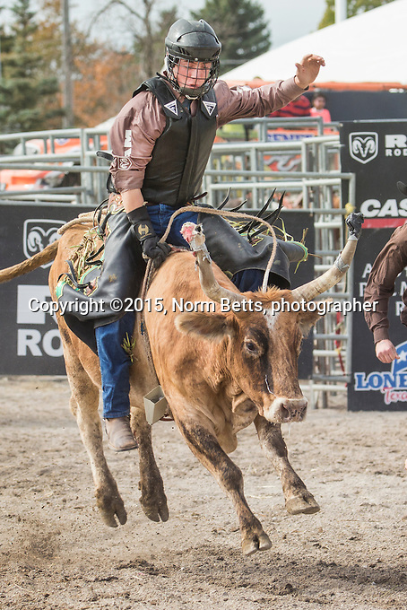 The RAM Rodeo Tour at the Markham Fair, Markham, Ontario, Canada<br /> <br /> normbetts@canadianphotographer.com<br /> 416 460 8743<br /> <br /> &copy;2015norm betts, photog