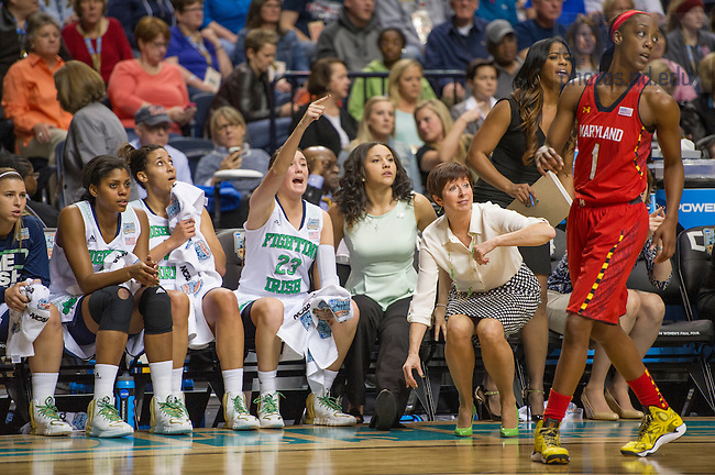 Apr. 6, 2014; Head coach Muffet McGraw and players cheer their teammates from the bench during the game against the Maryland Terrapins of the semifinals of the NCAA Final Four tournament at the Bridgestone Arena in Nashville, Tenn. Notre Dame defeated Maryland 87 to 61. Photo by Barbara Johnston/University of Notre Dame