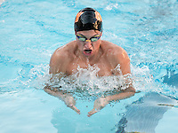 Alex Rand '15 in the men's 50 yard breaststroke. The Occidental College swim team competes against Lewis & Clark College and Westminster College in Taylor Pool on Jan. 6, 2015. (Photo by Marc Campos, Occidental College Photographer)