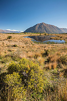 Ben Ohau / Ruataniwha Peak reflected in a pond near Lake Ohau, Canterbury, South Island, New Zealand