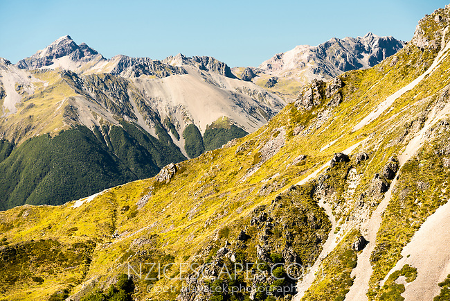 Nelson Lakes ranges, Nelson Lake National Park, South Island, New Zealand, NZ