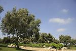 Israel, Tel Aviv. Hayarkon park
