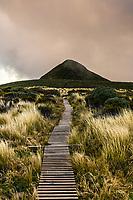 Taranaki/Pouakai Crossing Trail around Mount Taranaki a dormant stratovolcano in the Taranaki region on the west coast of New Zealand's North Island.