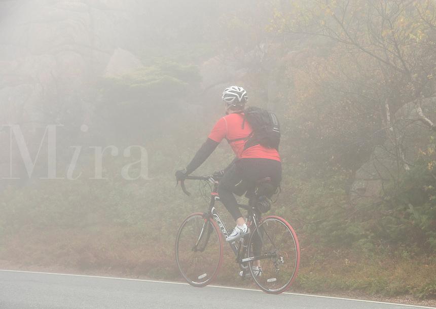 Touring biker climbs cadillac Mountain in fog, Acadia, Maine, USA
