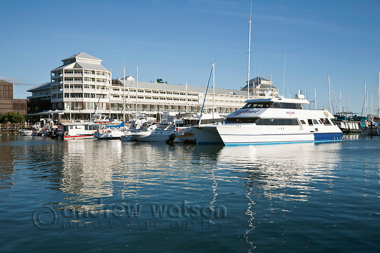 Dive boats at Marlin Marina with The Pier in background.  Cairns, Queensland, Australia