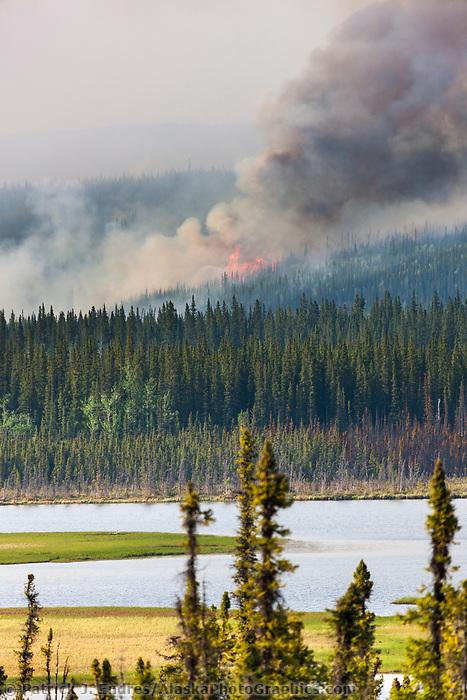 Wildland forest fire, May 2010 Eagle Trail fire near Tok and Tanacross, Alaska.