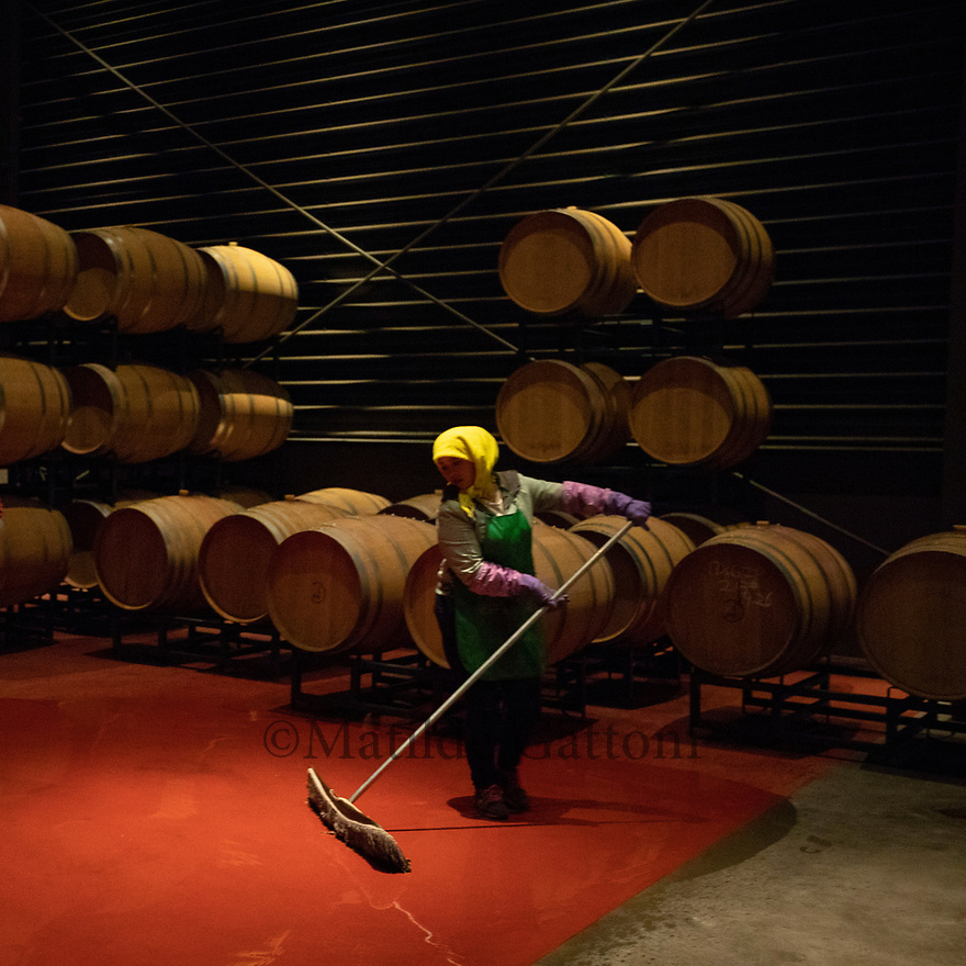 China - Ningxia - A worker cleaning the floor of the cellar after pouring wine into the oak barrels at Pigeon Hill Winery. <br />