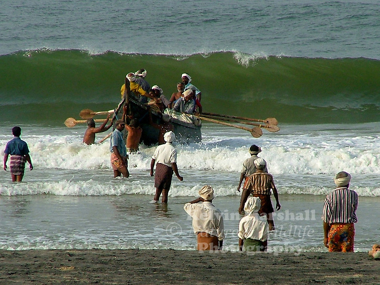 Villagers from around the Kovalam beach area meet returning fishing boats and then all gather together to pull in the nets to the beach. Kovalam, - Kerala (Southern India)