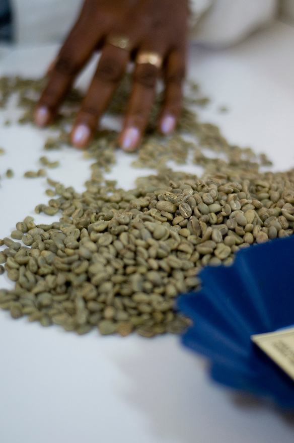 The coffee testing laboratory in Addis Ababa, with support from UNDP, provides quality assurance and ensures Ethiopias access to existing markets as well as opening up new markets.