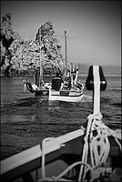 Europe/Provence-Alpes-Côte d'Azur/83/Var/Iles d'Hyères/Ile de Porquerolles: Au Cap des Mèdes, à la pêche sur le pointu de Gérard Genta, pêcheur et restaurateur: Restaurant du Pêcheur - Hôtel Le Porquerollais  <br /> Auto N°:2012-418