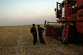 Gavrilivka, Ukraine.July 31, 2005 ..Combines work the great Ukrainian wheat fields.......