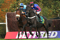 Race winner Wonderful Charm ridden by Daryl Jacob (L) and Bear's Affair  ridden by A P McCoy in jumping action during the Fakenham Novices Chase