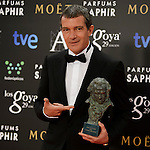 Spanish Actor Antonio Banderas,  Honorary Goya Award 2015,  attends the photocall after wins the 29 Goyas cinematographic awards at Auditorium Hotel in Madrid on February 7, 2015. Photo by Marta Gonzalez/ DyD Fotografos-DYDPPADYDPPA  PHOTOCALL3000