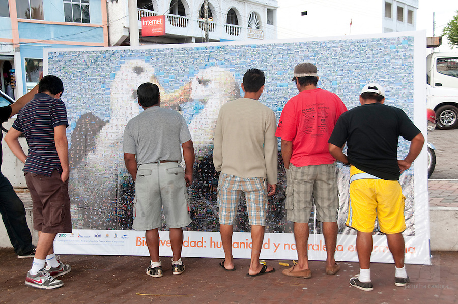For the year of biodiversity several organisations on the Galapagos worked together to create this mosaic poster of albatrosses consisting of people pictures. I made most of the pictures of the people, including the albatrosses. Here you see the people searching for people they know in the picture.