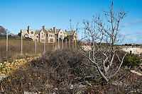 Large houses and mansions stand above the Cliff Walk National Recreation Trail in Newport, Rhode Island, on Sat., Dec. 3, 2016.