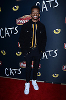 """LOS ANGELES - FEB 27:  Coy Stewart at the """"Cats"""" Play Opening at the Pantages Theater on February 27, 2019 in Los Angeles, CA"""