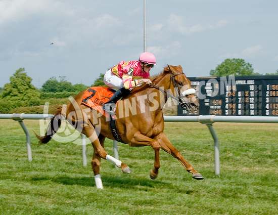 Welcome Dance winning The Walking in Da Sun Stakes at Delaware Park on 7/11/12