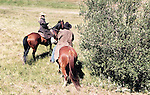 WALLY BAUMAN PHOTOGRAPHY.  Train robbery on horseback re-enactment.
