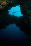 Angels Window & Diver; Lembeh Straits; Sulawesi Sea; Indonesia; Amazing Underwater Photography