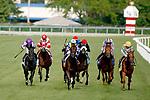 August 10, 2019 : Valid Point, ridden by Javier Castellano (green cap), wins the Secreteriat Stakes during Arlington Million Day at Arlington International Racecourse in Arlington Heights, Illinois. Jon Durr/Eclipse Sportswire/CSM