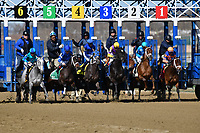 OZONE PARK, NY - APRIL 07: The start of the 123rd running of the Gazelle, Grade II on Wood Memorial Stakes Day at Aqueduct Race Track on April 7, 2018 in Ozone Park, New York. (Photo by Dan Heary/Eclipse Sportswire/Getty Images)