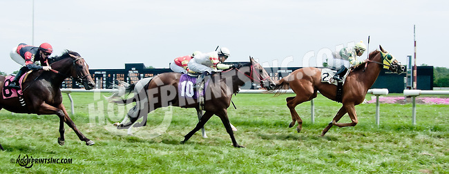 Greek Afair winning at Delaware Park on 8/10/13