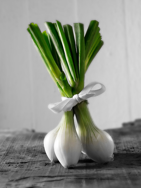 Bunch of Spring Onions