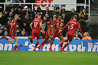 `a19` celebrates scoring the opening goal of the game during Newcastle United vs Swansea City, Premier League Football at St. James' Park on 13th January 2018