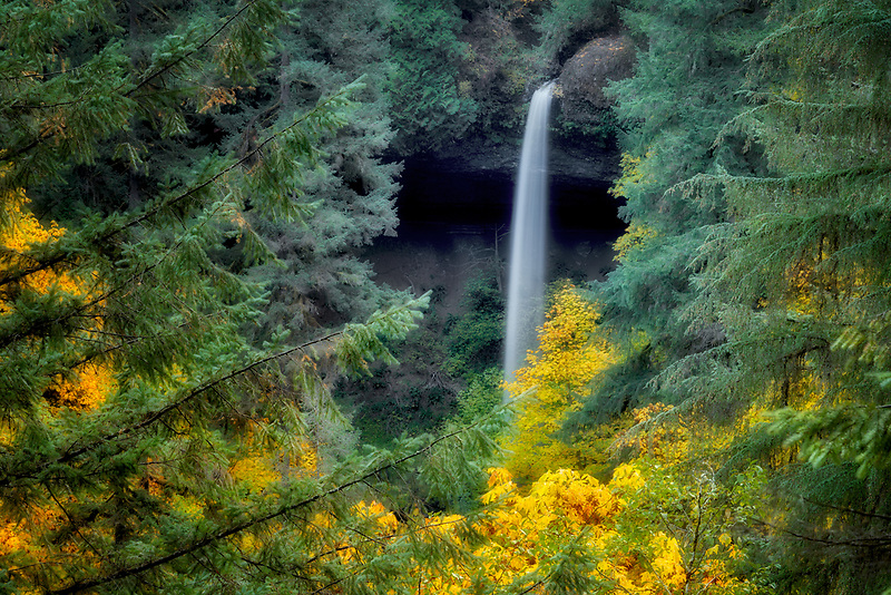 North Falls with autumn colors. Silver Falls State Park,