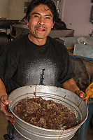 Oaxaca; Mexico; North America.  Local Craftsman Grinds Cacao Beans, Cinnamon, and Sugar into Chocolate Mole, an important ingredient used in cooking during the Day of the Dead Festivities.