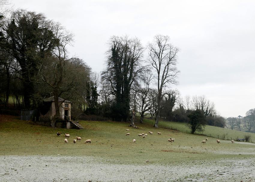 Photo: Richard Lane/Richard Lane Photography. Winter landscapes in Dorset. 07/12/2012.