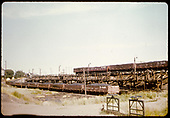 Coal dock - Alamosa<br /> D&amp;RGW  Alamosa, CO  Taken by Chione, A. G.