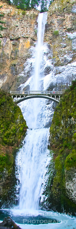 Multnomah Falls iced over in winter with river frozen and bridge over the waterfall in panoramic format