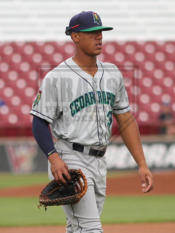 APPLETON - June 2015: Cedar Rapids Kernels catcher Jorge Fernandez (32) during a Midwest League baseball game against the Wisconsin Timber Rattlers on June 30th, 2015 at Fox Cities Stadium in Appleton, Wisconsin. Cedar Rapids defeated Wisconsin 3-2. (Brad Krause/Krause Sports Photography)