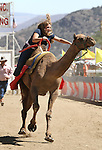 Teri Vance competes in the media challenge portion of the 51st Annual Virginia City International Camel Races in Virginia City, Nev. on Sept. 10, 2010..Photo by Cathleen Allison