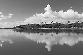 Pará State, Brazil. Xingu River. Reflection of forest and clouds.