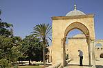 Israel, Jerusalem,  a prayer at Haram esh Sharif