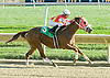 My Prefered winning at Delaware Park on 11/1/10