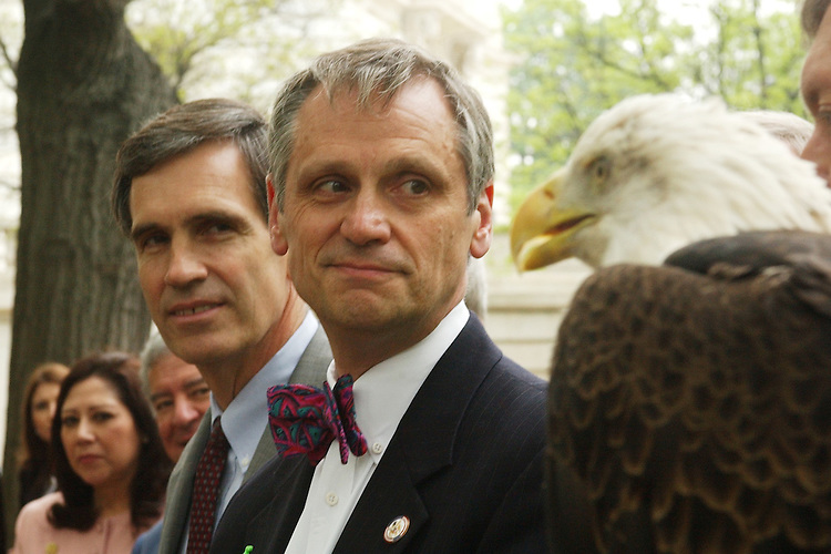 "eagle3/050103 -- Reps. Tom Allen, D-Me., left, and Earl Blumenauer, D-Ore., check out ""Skyler"", a 22 year old Bald Eagle, during a news conference in which members of Congress opposed the Department of Defense's campaign to exempt itself from vital environmental laws that protect public health."