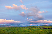 Carrizo Plain National Monument, CA: Colorful sunset clouds over spring green fields