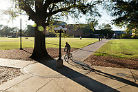 Students walking on Drill Field sidewalks.<br />  (photo by Megan Bean / &copy; Mississippi State University)