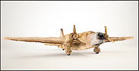 BNPS.co.uk (01202 558833)<br /> Pic: INK/BNPS<br /> <br /> *** Please use full byline***<br /> <br /> Dogfighters...<br /> <br /> Wellington bomber with Golden Retreiver camoflage...<br /> <br /> A design studio has launched its own dogs of war - by cleverly blending iconic Second World War planes with their canine counterparts.<br /> <br /> London-based INK created the impressive images by pairing a Spitfire with a Beagle, a Golden Retriever with a Wellington Bomber and a Schnauzer with a German bi-plane.<br /> <br /> The intricate 3D drawings re-imagine key aspects from each plane into recognisable dog features.<br /> <br /> The cockpits are transformed into furry eyebrows while the propellers become unmistakable wet noses.<br /> <br /> The Dogfighters series will be sold online as a series of limited edition prints.