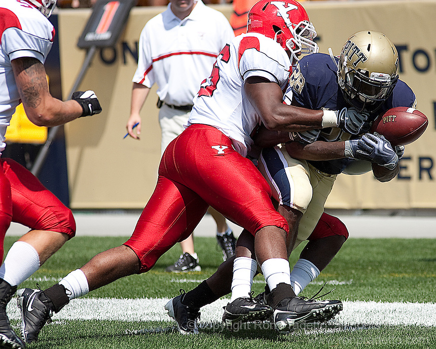 Pitt running back Dion Lewis. The Pittsburgh Panthers defeated the Youngstown State Penguins 38-3 at Heinz Field on September 5, 2009.