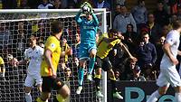 Lukasz Fabianski of Swansea City is challenged by Troy Deeney of Watford during the Premier League match between Watford and Swansea City at Vicarage Road Stadium, Watford, England, UK. Saturday 15 April 2017