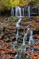 Mohawk Falls, Ricketts Glen State Park,  Pennsylvania.