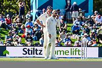Stiltz Signage during Day 2 of the Second International Cricket Test match, New Zealand V England, Hagley Oval, Christchurch, New Zealand, 31th March 2018.Copyright photo: John Davidson / www.photosport.nz