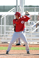 Danny Dorn, Cincinnati Reds 2010 minor league spring training..Photo by:  Bill Mitchell/Four Seam Images.