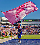 12 October 2014: The Buffalo Bills celebrate a scoring play with pink flags for Breast Cancer Awareness month during a game against the New England Patriots at Ralph Wilson Stadium in Orchard Park, NY. The Patriots defeated the Bills 37-22 to move into first place in the AFC Eastern Division. Mandatory Credit: Ed Wolfstein Photo *** RAW (NEF) Image File Available ***